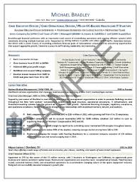 Chief Operations Officer Resume Sample  amp  Template Software Designer Sample Resume Hospital Chief Operating Officer En Resume Sample Internship Resume      Image