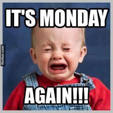 funny-monday-pictures-9.jpg via Relatably.com