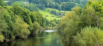 Image result for river wye