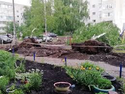 В Каменке <b>Пензенской области</b> на <b>автомобили</b> рухнуло дерево ...