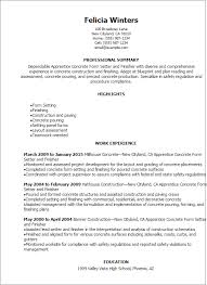 a company resume sample resume internal company transfer resume    construction resume templates construction