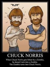 Most grizzled men on Pinterest | Chuck Norris, Beards and Sean Connery via Relatably.com