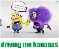 driving me bananas meaning in hindi picture dictionary driving me bananas menaing