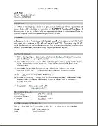 sample sap how to write a good document based junior travel consultant resume