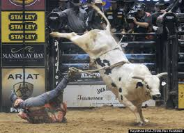 Image result for rodeo funnies