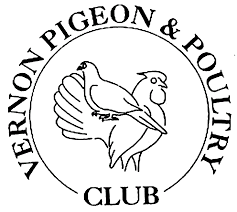 Image result for ameraucana poultry club
