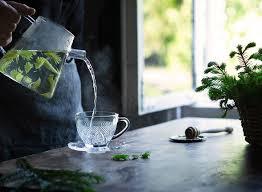 <b>Wild Herbs</b> as Healthy <b>Tea</b> – METTÄ nordic