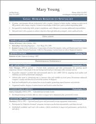 resume summary examples entry level resume examples  tags resume summary examples entry level accounting resume summary examples entry level example resume summary statement examples entry level
