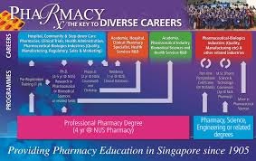 bachelor of science pharmacy nus national university of previous tab next tab