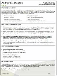 example resume chief financial officer  CFO  resume    a