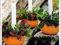 40 лучших изображений доски «тыква» | Тыква, Осенние ...