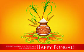 advance pongal sms messages whatsapp status fb dp images new pics for pongal 2015 festival