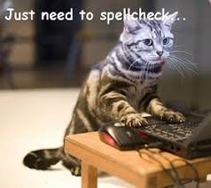 kitten essay help  uk writing experts college essay writing