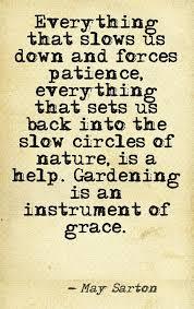 May Sarton Quotes Tree. QuotesGram via Relatably.com