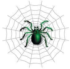 Image result for spider net images