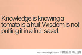 Knowledge vs. Wisdom - The Meta Picture via Relatably.com