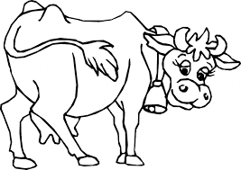 Small Picture Cow Colouring Sheet 3 Color Page 2gif Bunong