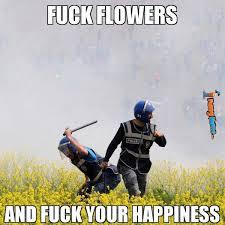 Funny memes - As an allergy sufferer | FunnyMeme.com via Relatably.com