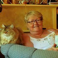 Fran Doner (doner2685) on Pinterest