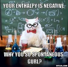 Chemistry Cat Meme Generator - DIY LOL via Relatably.com