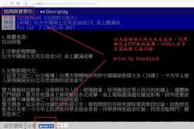 《美麗島電子報》吳子嘉說蔡英文是台灣能力最差的領導人,林義雄是他碰到最荒謬的一位台獨!!