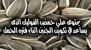 ماذا يفعل اللب السورى فى جسم الانسان ؟