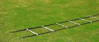 Image result for ladder on grass