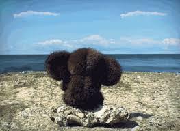 """Марионеточные """"власти"""" Крыма приглашают Трампа посетить оккупированный полуостров - Цензор.НЕТ 8397"""