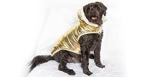 <b>Winter Dog Coats</b> & Jackets: Metallic, Fleece & More — Sweetie B ...