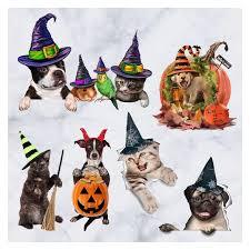 Fashion Kitten Puppy Pumpkin <b>Halloween</b> Sticker <b>Home Decoration</b> ...