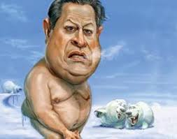 Solar Cycle 24 Freezes Out Al Gore | Veterans Today via Relatably.com