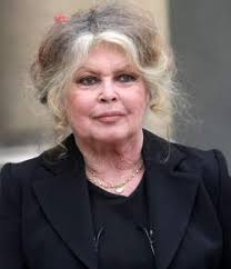 Brigitte Bardot ne pardonne pas à <b>Marc-Olivier</b> Fogiel - brigitte-bardot-ne-pardonne-pas-a-marc-olivier-fogiel_34473_w250