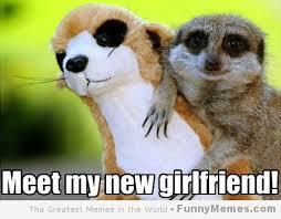 FunnyMemes.com • Cute memes - [Meet my girlfriend] via Relatably.com