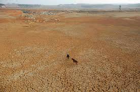 chinas drought   photo essays   time drought in china