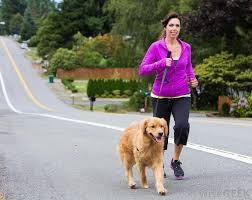 Image result for person walking dog