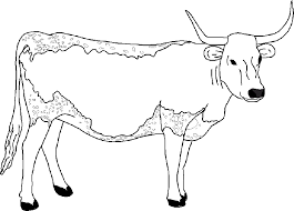 Small Picture Baby Cow Maze Coloring Coloring Pages
