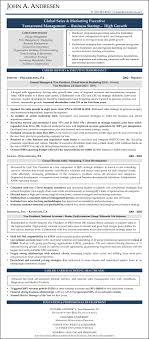 sample résumé s marketing nonprofit resume writers sample resume john andresen s and marketing