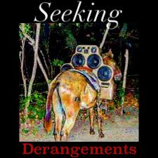 Seeking Derangements