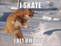 skating | Life @ U of T via Relatably.com