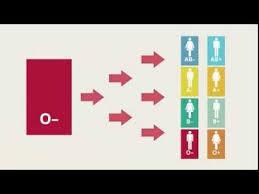 Importance of <b>O Negative Blood</b> | OneBlood