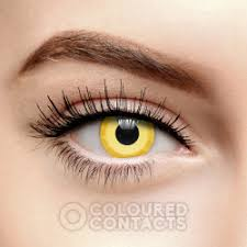 <b>FX</b> Contact Lenses, Special Effect Contacts, Halloween & Cosplay