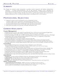 examples of professional summary best business template resume examples professional summary sample s resume critique in examples of professional summary 8419