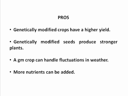 genetically modified foods essay gmo food essay writing service for you   genetically modified food pros and cons