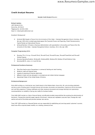 customer service resume sample skills professional customer customer service resume sample skills resume skills and abilities templates resume skills and abilities examples