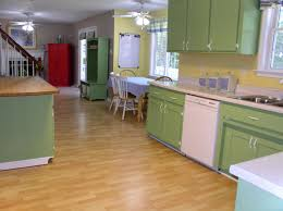 awesome kitchen with great interior decor home with types of kitchen cabinets materials awesome types cabinet