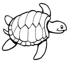 Small Picture Turtle Coloring Book Coloring Coloring Pages