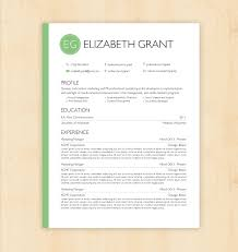resume format and layoutresume template   cv template the elizabeth grant by phdpress