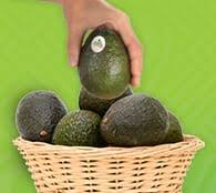 Avocados From <b>Mexico</b> | Avocado Nutrition, Recipes, & Cooking Tips
