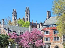 JESSICA SVENDSEN  HOW TO AVOID GETTING TYPECAST AS A DESIGNER     Yale s Graduate School of Arts   Sciences   Yale University The Creative Writing Program is part of the Department of English  Admission to the Program is extremely competitive  with    new students across the