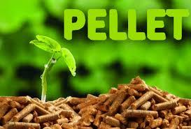 Resultado de imagen de PELLET